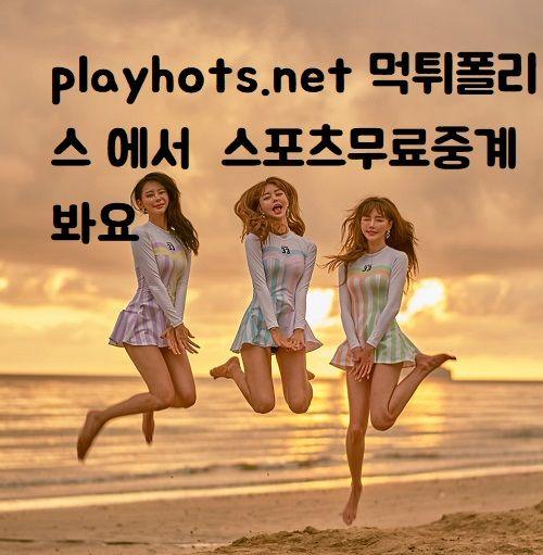 playhots.net 먹튀폴리스